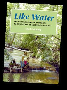 like_water_book